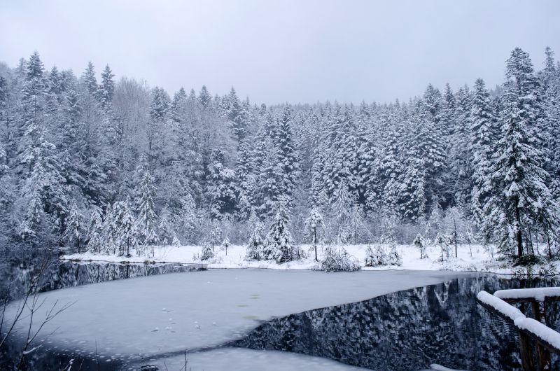 """Результат пошуку зображень за запитом озеро журавлине зима"""""""
