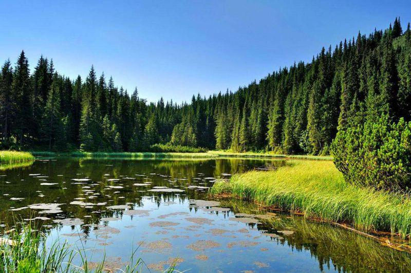 15 найкрасивіших озер у Карпатах (фото)
