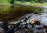 Рыбалка в Украине: 37 мест с хорошим клевом