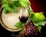 Тур в Закарпатье на 8 Марта: вино, форель и Европа!