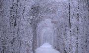 Новый год в Янтарном крае и замки Волыни