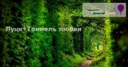 Луцк+Тоннель любви