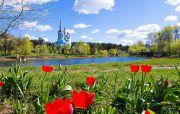 Горишние Плавни из Харькова