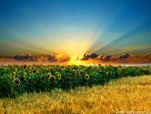 Зустрічаємо літо на півдні України
