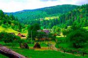 Четыре незабываемых дня в Закарпатье