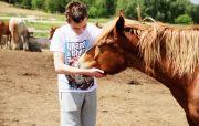 Путешествие на ранчо и парк в Буче