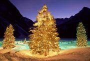 Різдвяне Закарпаття