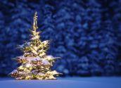 Куди поїхати на новорічні канікули 2015–2016