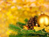 Новогодняя сказка Закарпатья - Мукачево - отель Лангер