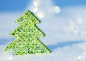 Тайны Хустского замка + Синевир на Рождество