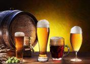 Чернигов с дегустацией пива