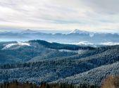 Зима в Гуцульском крае!