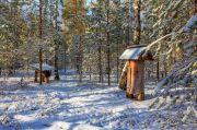 Зима у Поліському заповіднику