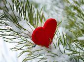 Закарпатская сказка на День Святого Валентина