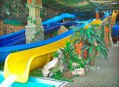 Поїздка до Харківського аквапарку Джунглі з Дніпропетровська