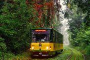 Киевский трамвайчик-кафе. Откройте для себя столицу на колесах