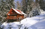 Winter holidays in the Carpathians. Wooden cottages
