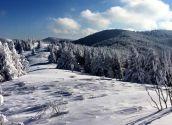 Зимовий маршрут зі Львова: Сколе – Лопата – Кам'янка