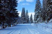 Зимний маршрут из Львова: однодневное путешествие к истокам рек Опир и Стрый