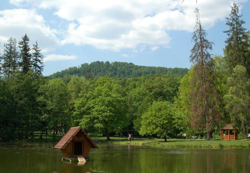 Карпаты . Все про Карпаты , Мукачевский район: погода, рестораны,  гостиницы, афиша.