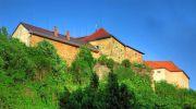 Старе місто Ужгорода: Фенікс на спині Ужа