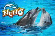Посещение Дельфинария и Океанариума «Немо». Одесса