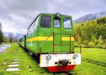 Карпатський трамвай, Гошів і не лише