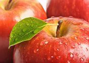 Пришел Яблочный Спас – бери рукавицы про запас