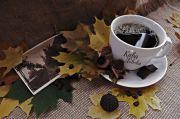 Місто з ароматом кави