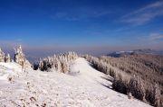 Зимний поход в Карпаты «Панорама Черногорского хребта»