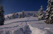 Зимний поход в Карпаты «Кукуль»