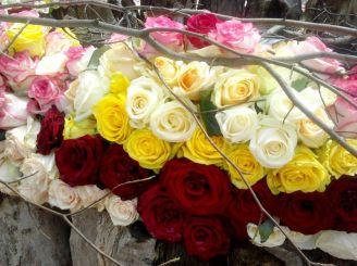 Фестиваль цветов «Любовь в Сент-Миклош» 2017, Чинадиево