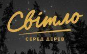 Фестиваль «Світло серед дерев» 2017, Житомир