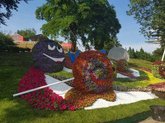 Выставка цветов «Мир великанов» на Певческом поле, Киев