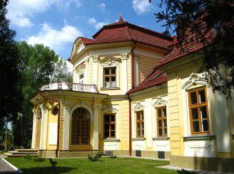Brunytsky Palace (Velykyi Liubin)