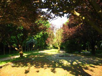 Sknylivskom Park