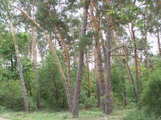 Національний природний парк Кармелюкове Поділля