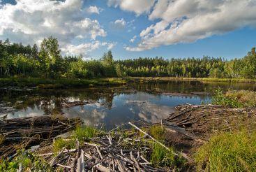 Национальный природный парк Слобожанский, Краснокутск