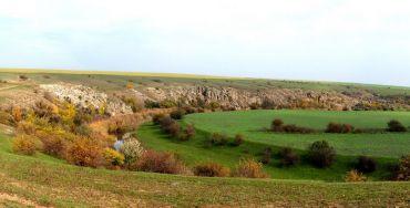 Региональный ландшафтный парк «Приингульский»