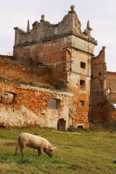 Замок Острозьких у Старому Селі
