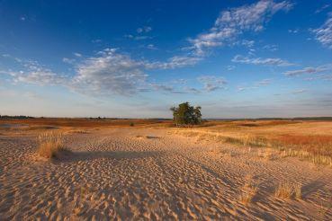 Кицевская пустыня, Кицевка