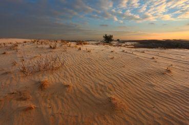 Кицівська пустеля, Кицівка