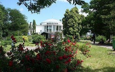 Ботанічний сад імені Олександра Фоміна, Київ