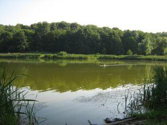 Зелена зона біля Мишоловського яру, Київ