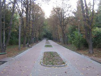 Парк «Березовая роща», Киев