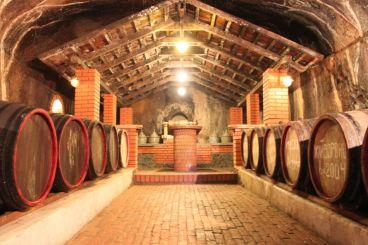 Старий винний підвал, Берегове