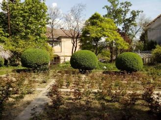 Ботанічний сад Ужгородського національного університету, Ужгород