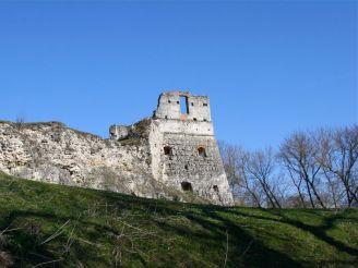 Токівський замок, Токи