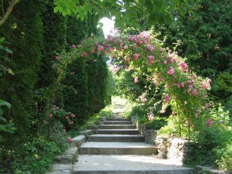 Кременецький ботанічний сад, Кременець