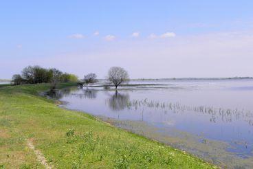 Ermakov Island